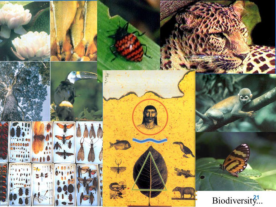21 Biodiversity...