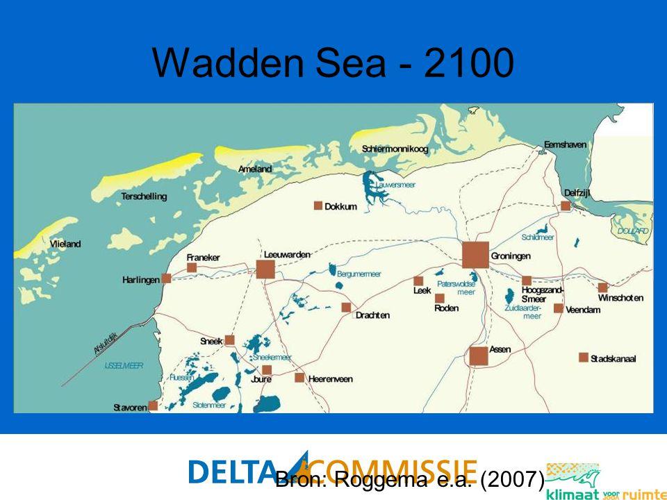 89 Wadden Sea - 2100 Bron: Roggema e.a. (2007)