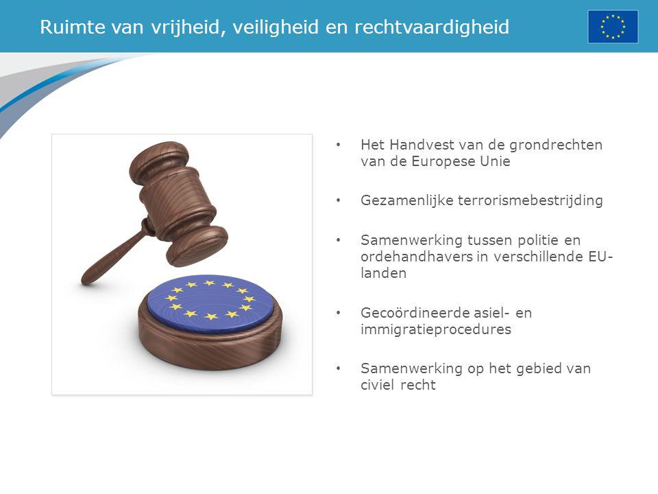 Ruimte van vrijheid, veiligheid en rechtvaardigheid Het Handvest van de grondrechten van de Europese Unie Gezamenlijke terrorismebestrijding Samenwerk