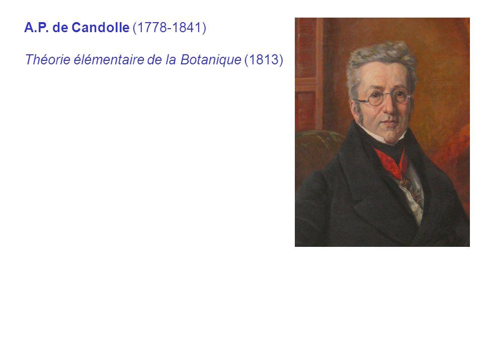 A.P. de Candolle (1778 ‑ 1841) Théorie élémentaire de la Botanique (1813)