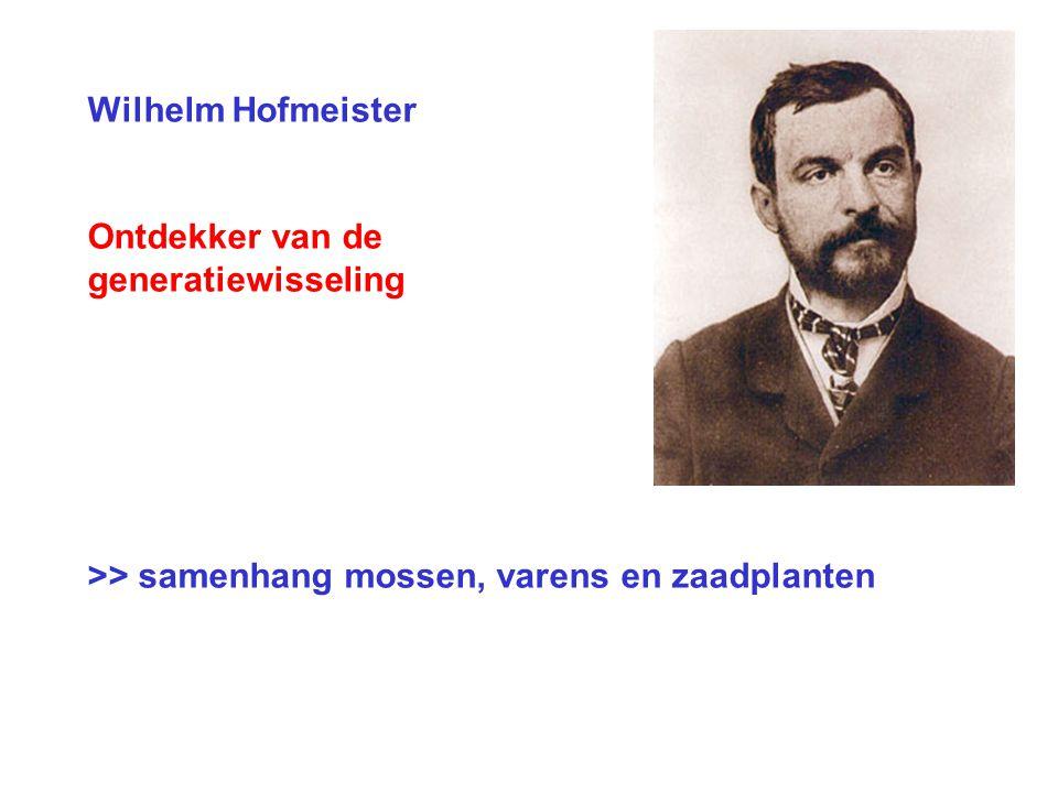 Wilhelm Hofmeister Ontdekker van de generatiewisseling >> samenhang mossen, varens en zaadplanten