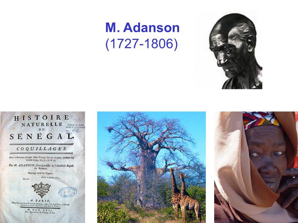 M. Adanson (1727 ‑ 1806)