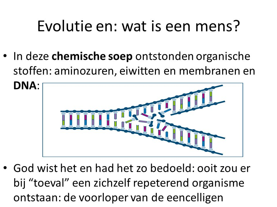 Evolutie en: wat is een mens.