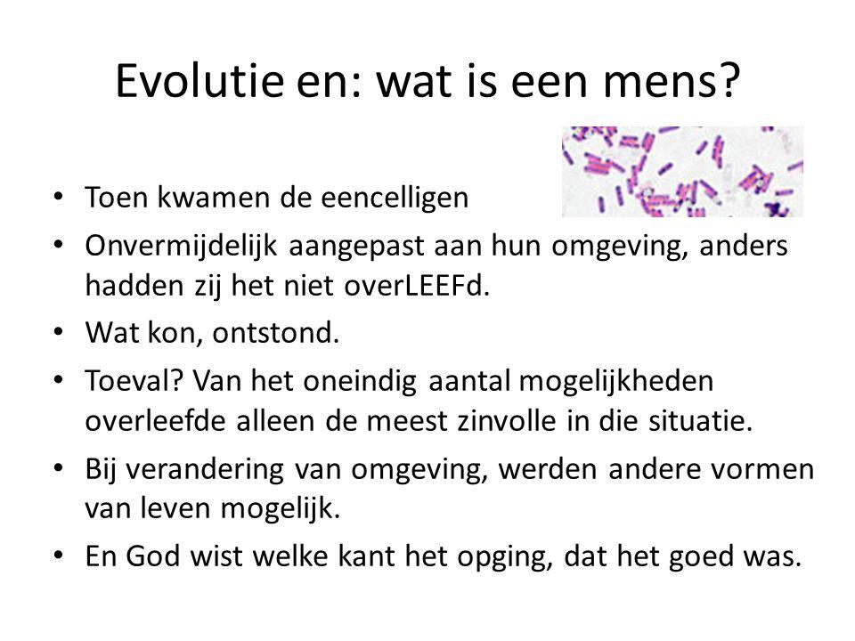 Evolutie en: wat is een mens? Toen kwamen de eencelligen Onvermijdelijk aangepast aan hun omgeving, anders hadden zij het niet overLEEFd. Wat kon, ont