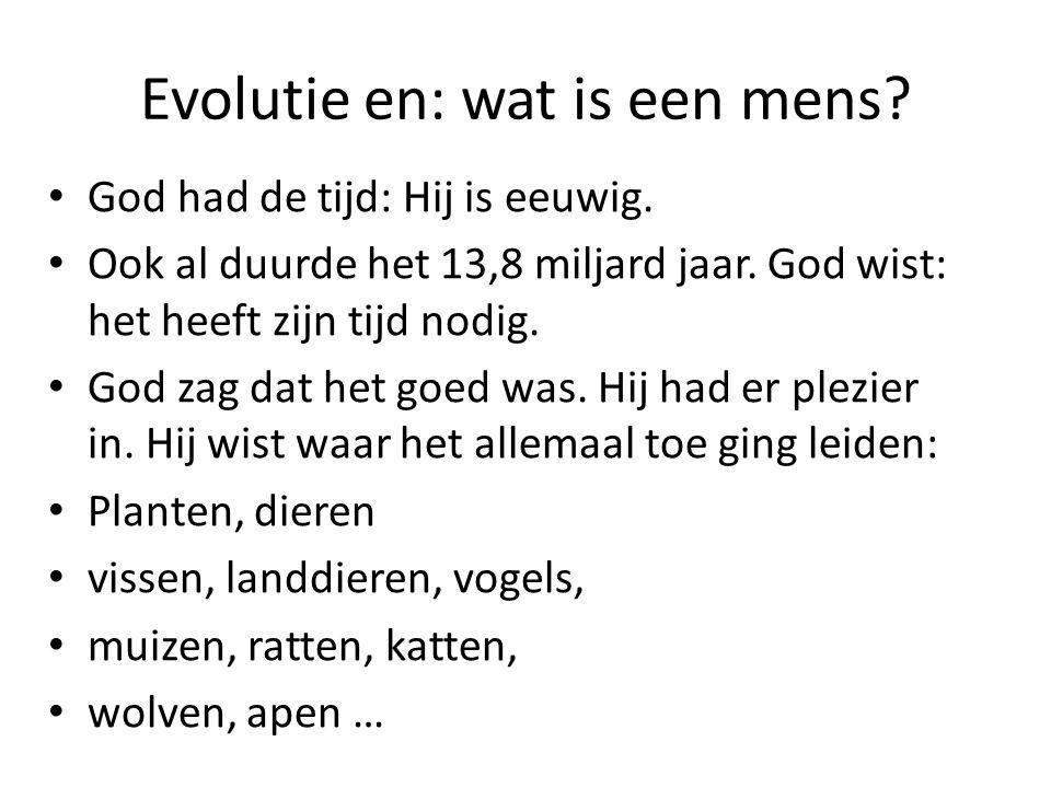 Evolutie en: wat is een mens? God had de tijd: Hij is eeuwig. Ook al duurde het 13,8 miljard jaar. God wist: het heeft zijn tijd nodig. God zag dat he