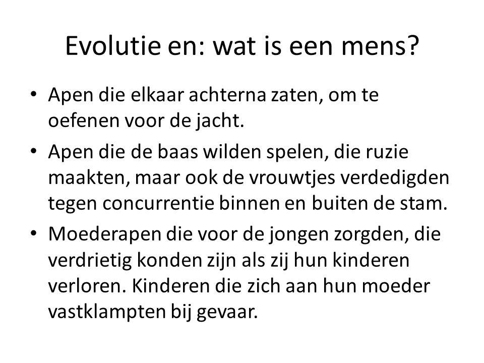 Evolutie en: wat is een mens? Apen die elkaar achterna zaten, om te oefenen voor de jacht. Apen die de baas wilden spelen, die ruzie maakten, maar ook