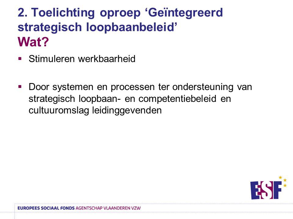 2. Toelichting oproep 'Geïntegreerd strategisch loopbaanbeleid' Wat?  Stimuleren werkbaarheid  Door systemen en processen ter ondersteuning van stra