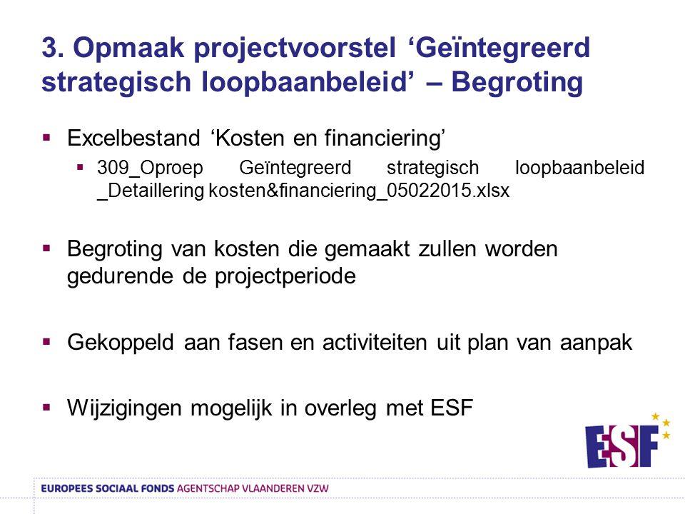 3. Opmaak projectvoorstel 'Geïntegreerd strategisch loopbaanbeleid' – Begroting  Excelbestand 'Kosten en financiering'  309_Oproep Geïntegreerd stra