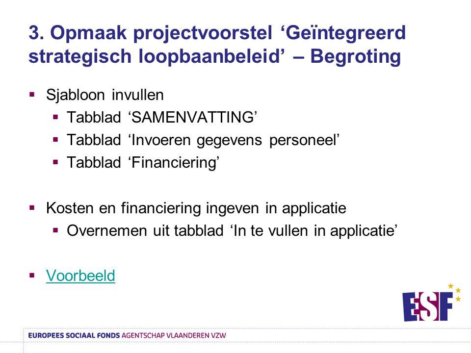 3. Opmaak projectvoorstel 'Geïntegreerd strategisch loopbaanbeleid' – Begroting  Sjabloon invullen  Tabblad 'SAMENVATTING'  Tabblad 'Invoeren gegev