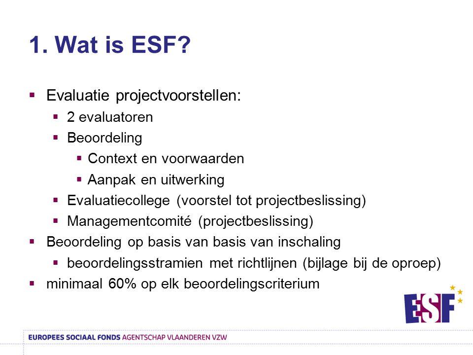 1. Wat is ESF?  Evaluatie projectvoorstellen:  2 evaluatoren  Beoordeling  Context en voorwaarden  Aanpak en uitwerking  Evaluatiecollege (voors