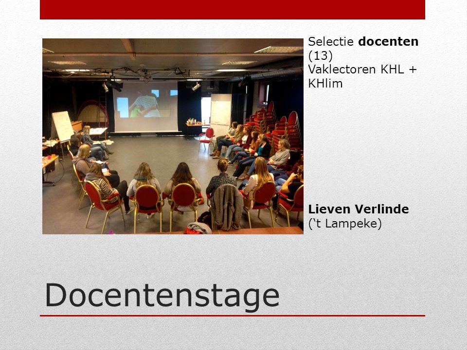 Docentenstage Selectie docenten (13) Vaklectoren KHL + KHlim Lieven Verlinde ('t Lampeke)