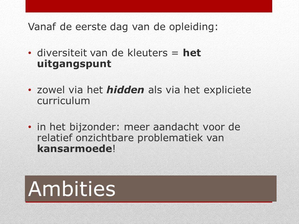 Output concrete acties (Johan Theunis) Voorleven van een (gemeenschappelijke of individuele) visie of grondhouding.