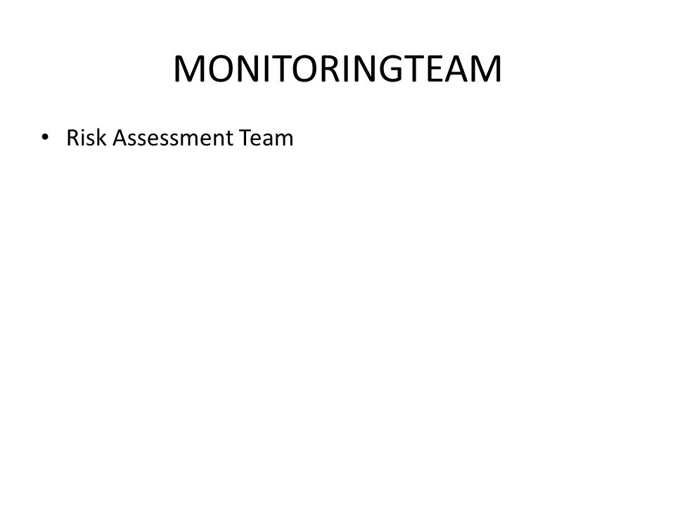 MONITORINGTEAM Risk Assessment Team