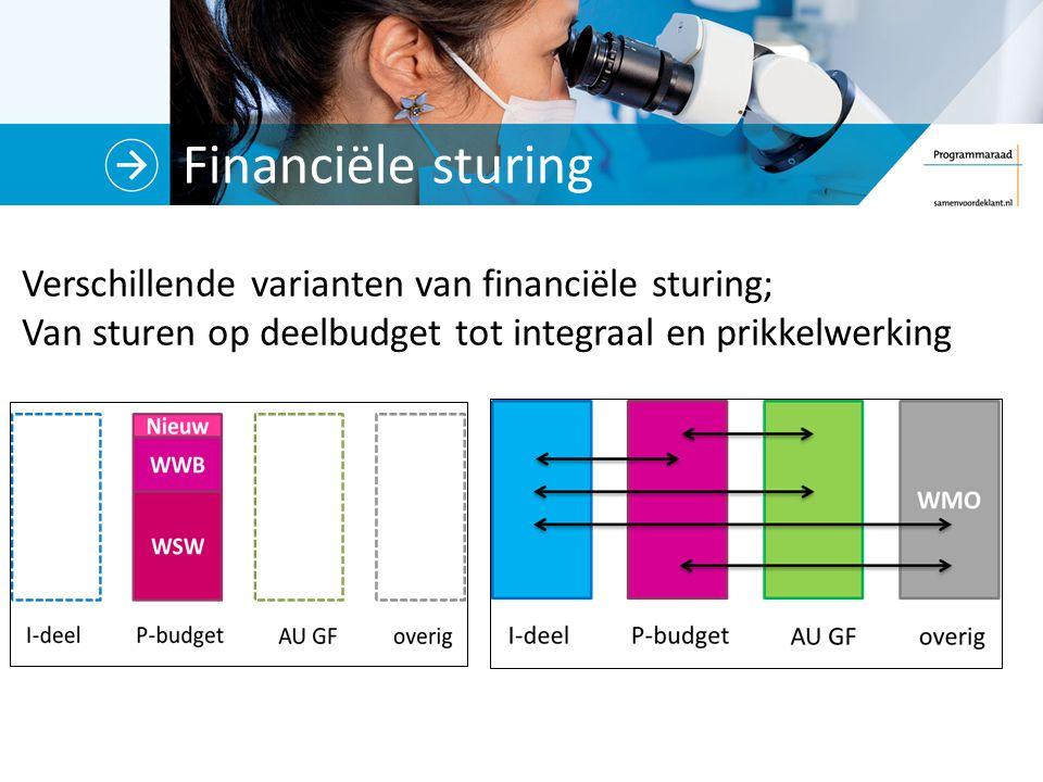 Financiële sturing Verschillende varianten van financiële sturing; Van sturen op deelbudget tot integraal en prikkelwerking