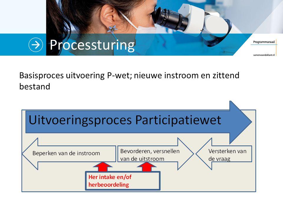 Processturing Basisproces uitvoering P-wet; nieuwe instroom en zittend bestand