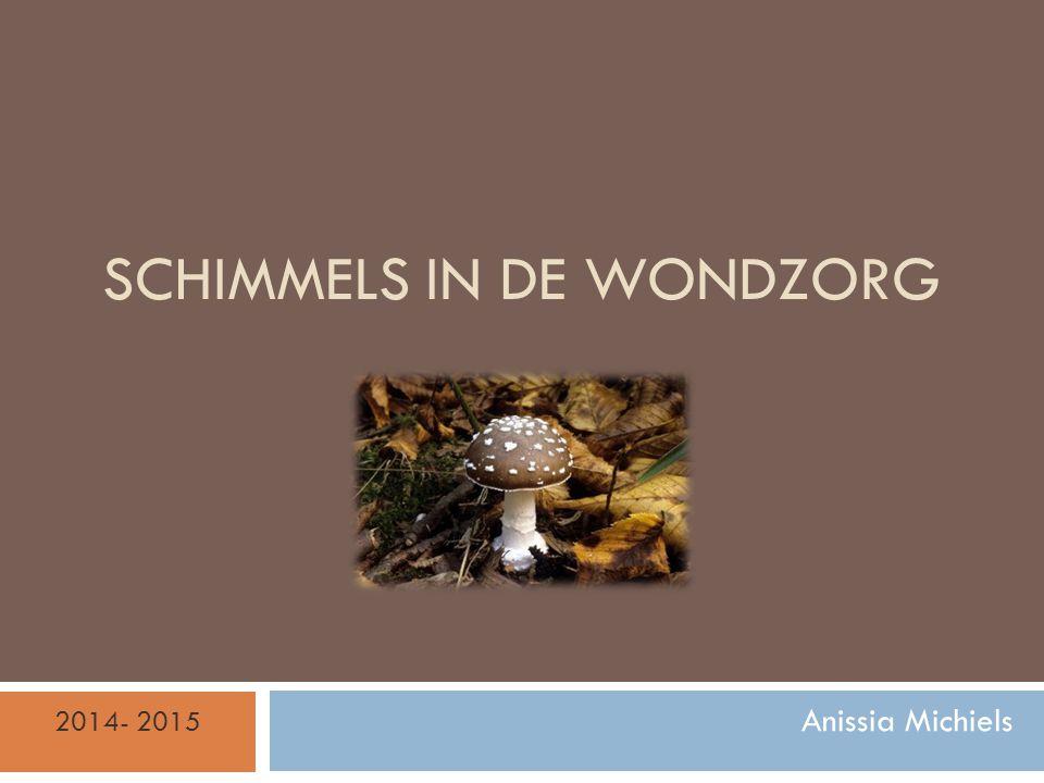 SCHIMMELS IN DE WONDZORG Anissia Michiels 2014- 2015