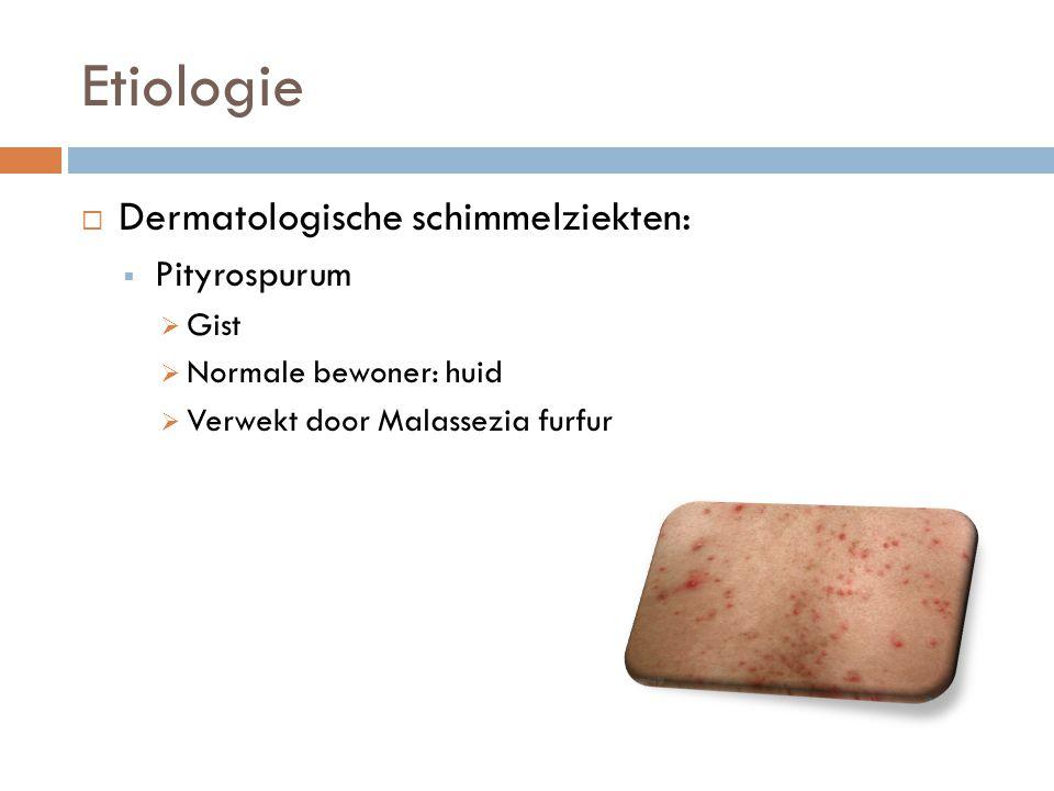 Etiologie  Dermatologische schimmelziekten:  Pityrospurum  Gist  Normale bewoner: huid  Verwekt door Malassezia furfur