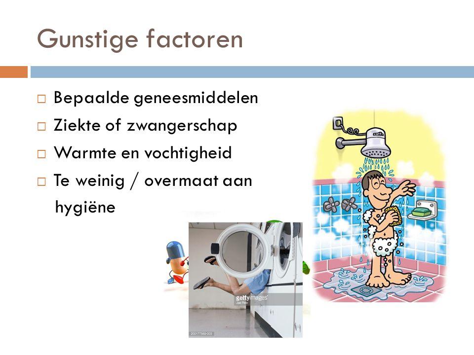 Gunstige factoren  Bepaalde geneesmiddelen  Ziekte of zwangerschap  Warmte en vochtigheid  Te weinig / overmaat aan hygiëne