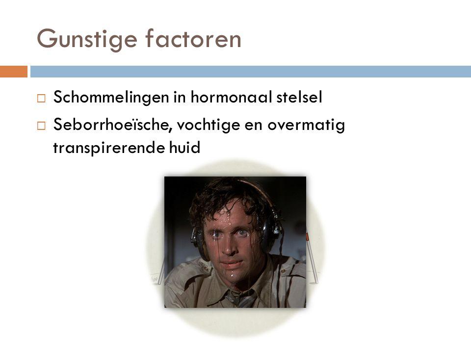 Gunstige factoren  Schommelingen in hormonaal stelsel  Seborrhoeïsche, vochtige en overmatig transpirerende huid
