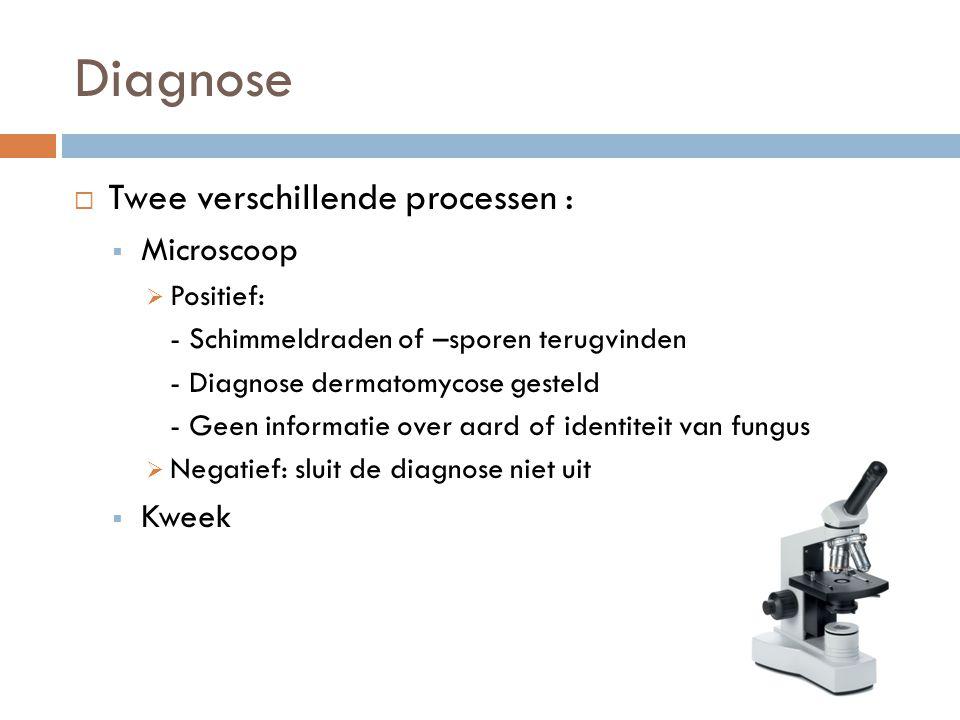 Diagnose  Twee verschillende processen :  Microscoop  Positief: - Schimmeldraden of –sporen terugvinden - Diagnose dermatomycose gesteld - Geen inf