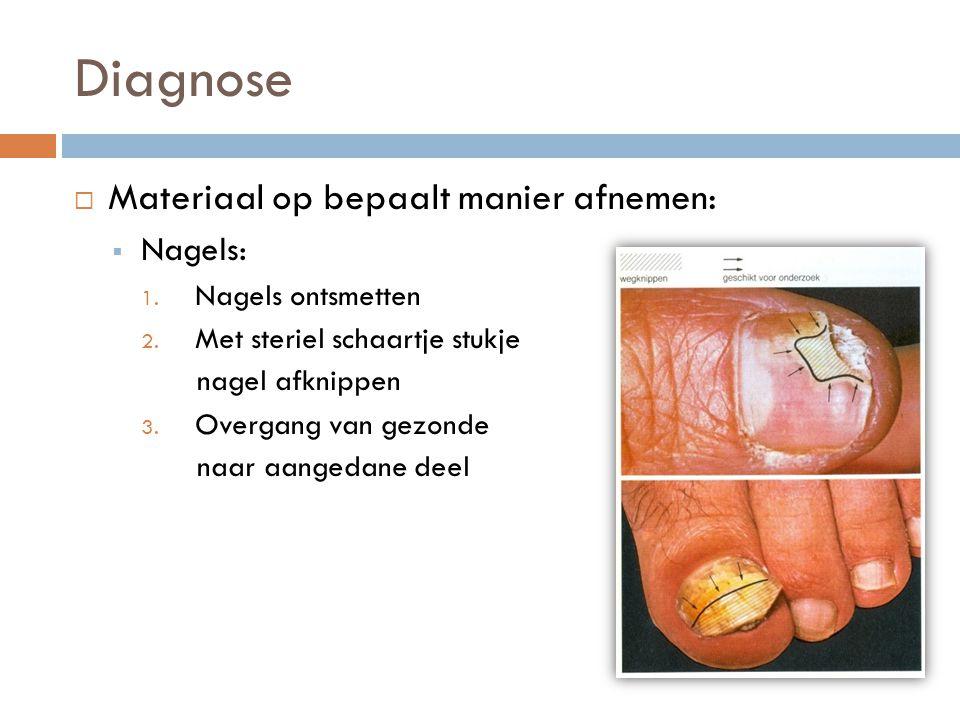 Diagnose  Materiaal op bepaalt manier afnemen:  Nagels: 1. Nagels ontsmetten 2. Met steriel schaartje stukje nagel afknippen 3. Overgang van gezonde