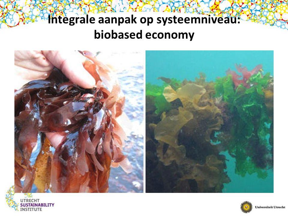 Integrale aanpak op systeemniveau: biobased economy