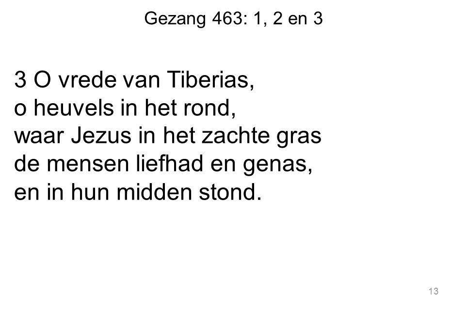 Gezang 463: 1, 2 en 3 3 O vrede van Tiberias, o heuvels in het rond, waar Jezus in het zachte gras de mensen liefhad en genas, en in hun midden stond.