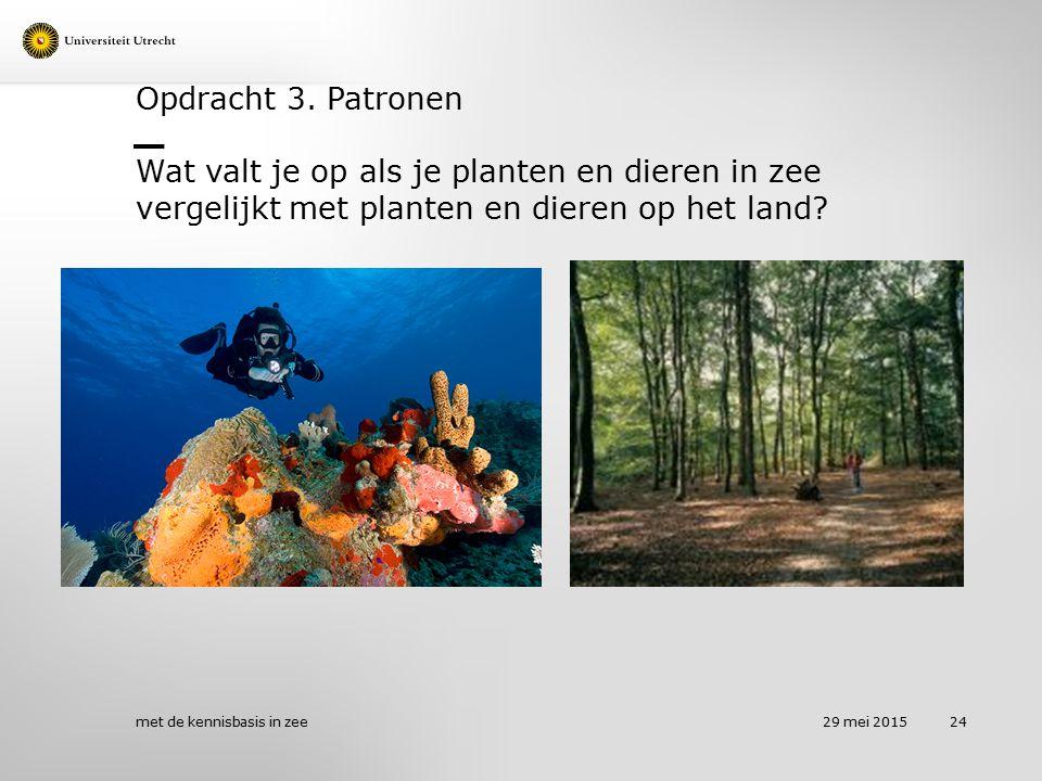 Opdracht 3. Patronen Wat valt je op als je planten en dieren in zee vergelijkt met planten en dieren op het land? 29 mei 2015 met de kennisbasis in ze