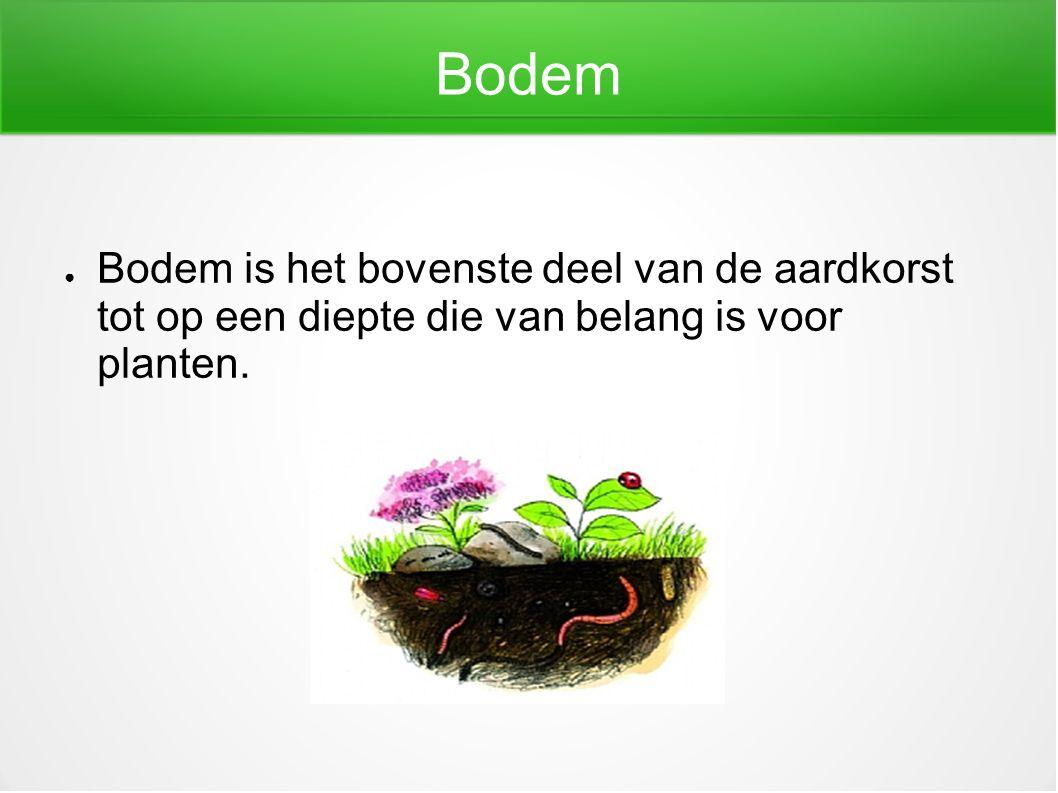 Bodem ● Bodem is het bovenste deel van de aardkorst tot op een diepte die van belang is voor planten.