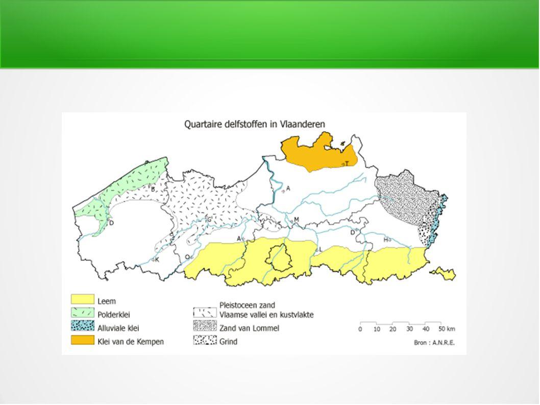 Grondwaterregime Hangwaterprofiel: geen invloed van het grondwater dat zich te diep onder de wortels bevind.
