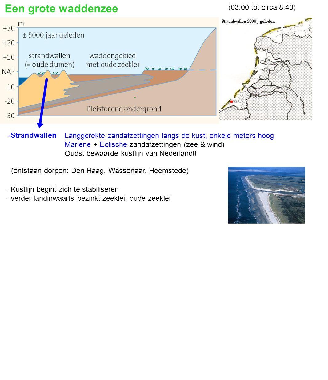 - waddenzee verdwijnt (zee trekt terug= regressie) - kust sluit zich (strandwallen vergroeien) - Afvoeren rivieren lastig naar Noordzee - waddenzee wordt zoetwatermoeras - Hollandveen op oude zeeklei Nederland raakt overveend.