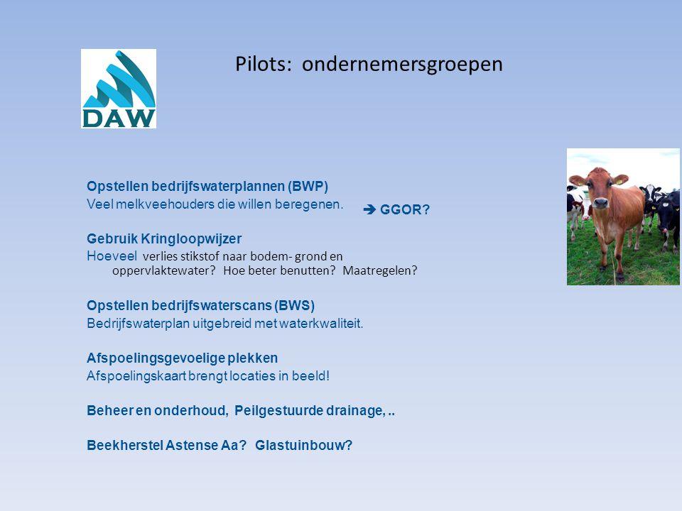 Pilots: ondernemersgroepen Opstellen bedrijfswaterplannen (BWP) Veel melkveehouders die willen beregenen. Gebruik Kringloopwijzer Hoeveel verlies stik