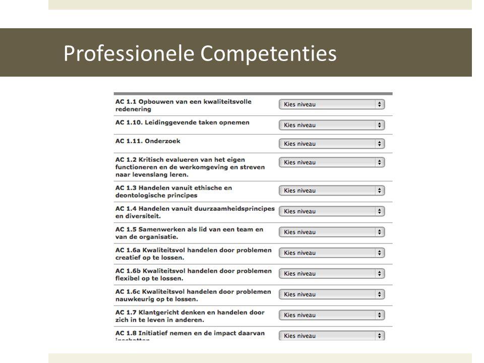 Professionele Competenties