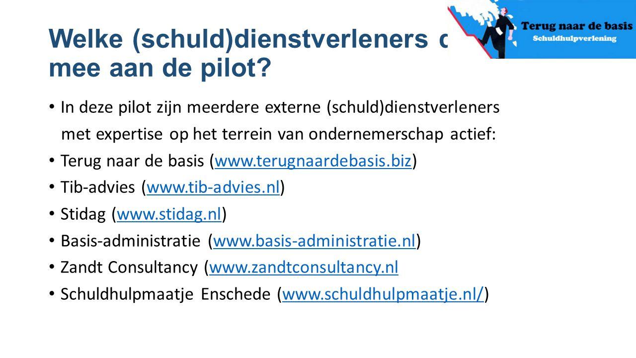 Welke (schuld)dienstverleners doen mee aan de pilot? In deze pilot zijn meerdere externe (schuld)dienstverleners met expertise op het terrein van onde