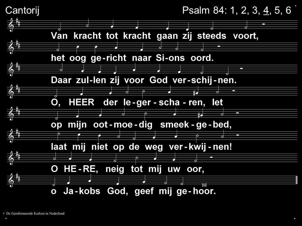 .... Zingen:LB 289 Gebed Collecte Zingen:LB 416 in wisselzang Zegen Amen = LvdK 456: 3