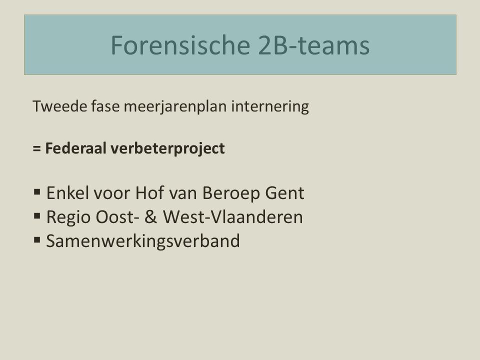 Forensische 2B-teams Tweede fase meerjarenplan internering = Federaal verbeterproject  Enkel voor Hof van Beroep Gent  Regio Oost- & West-Vlaanderen  Samenwerkingsverband