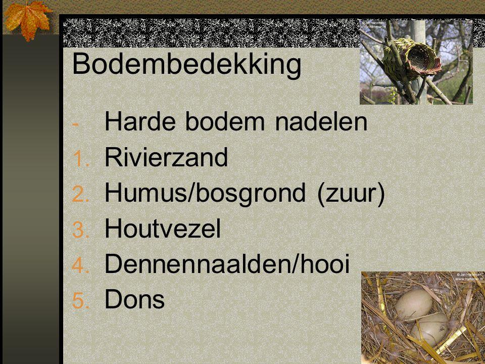 Bodembedekking - Harde bodem nadelen 1. Rivierzand 2. Humus/bosgrond (zuur) 3. Houtvezel 4. Dennennaalden/hooi 5. Dons