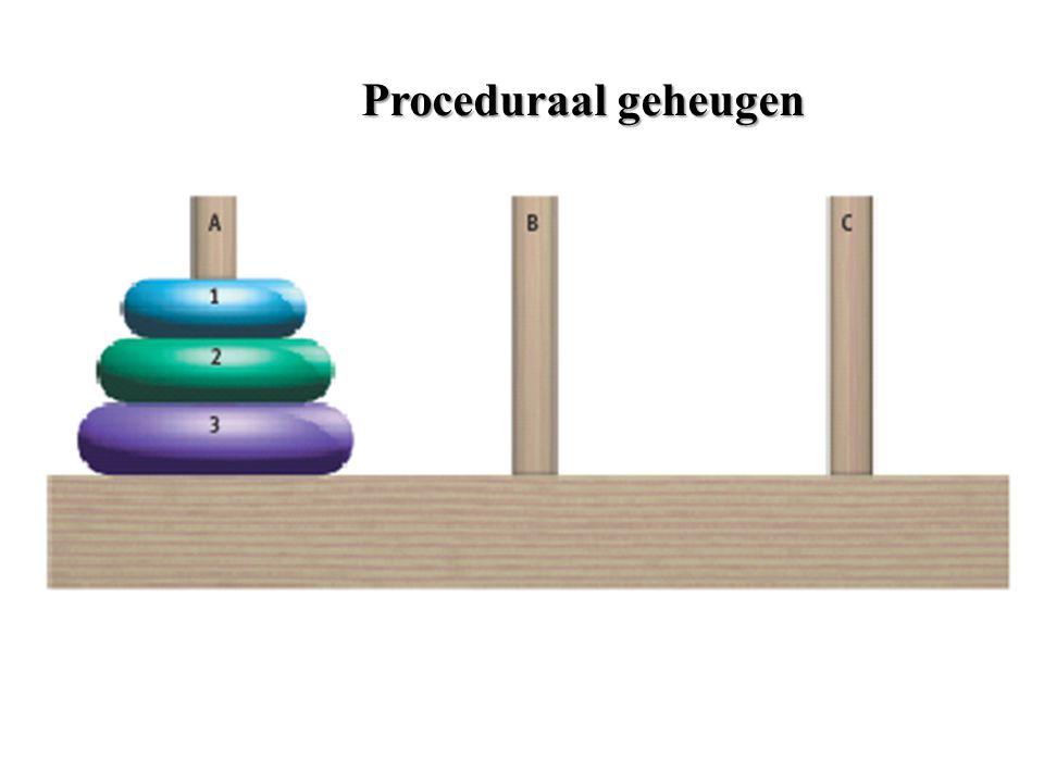 Proceduraal geheugen