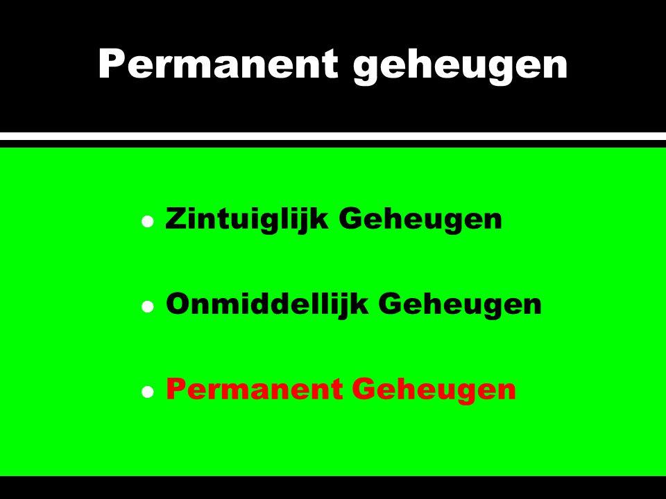 l Zintuiglijk Geheugen l Onmiddellijk Geheugen l Permanent Geheugen Permanent geheugen