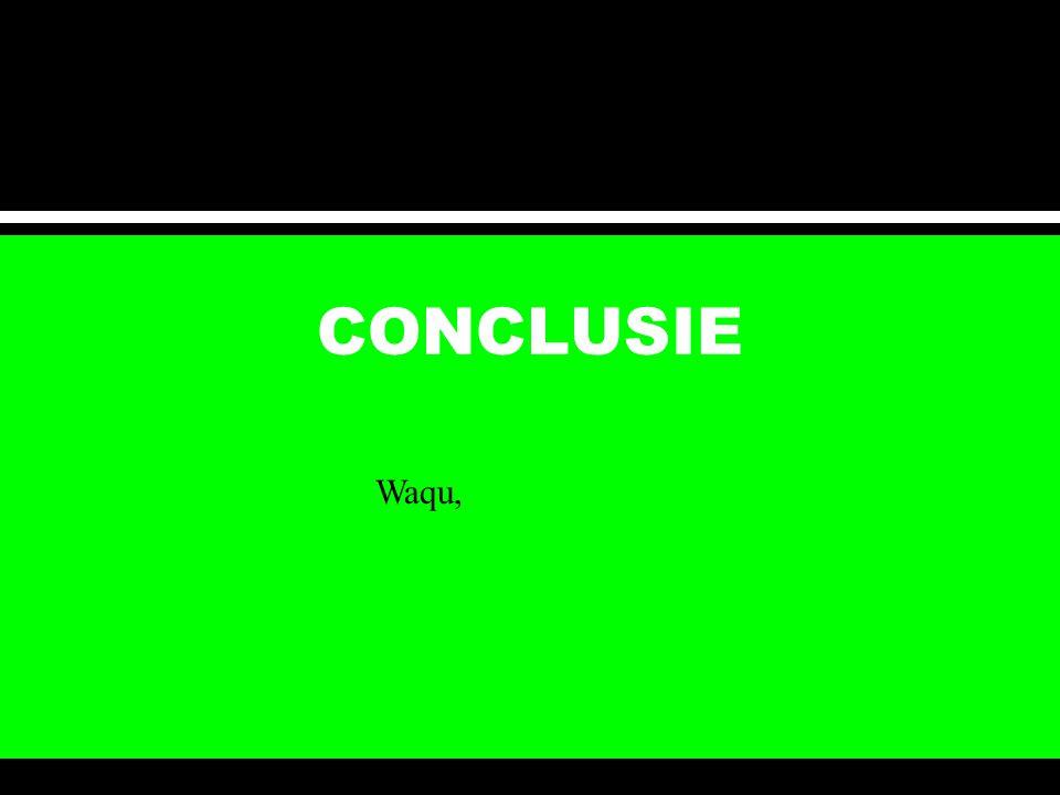 CONCLUSIE Waqu,