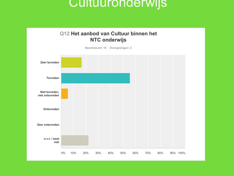 Cultuuronderwijs