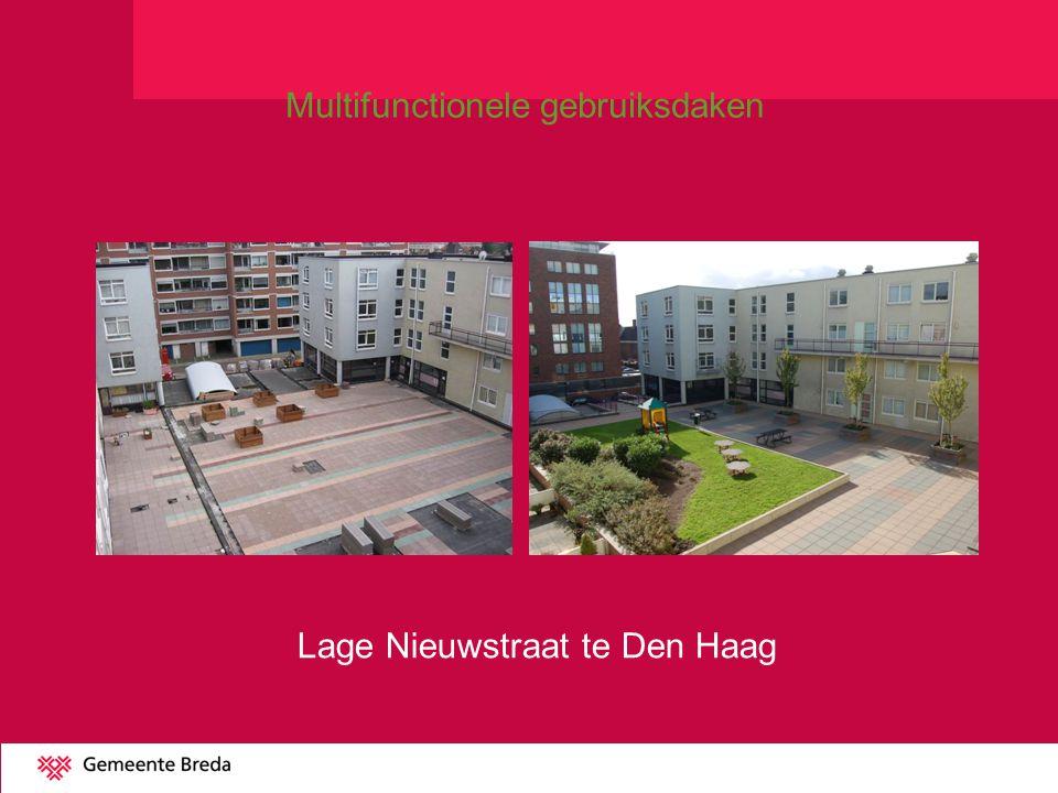 Lage Nieuwstraat te Den Haag Multifunctionele gebruiksdaken