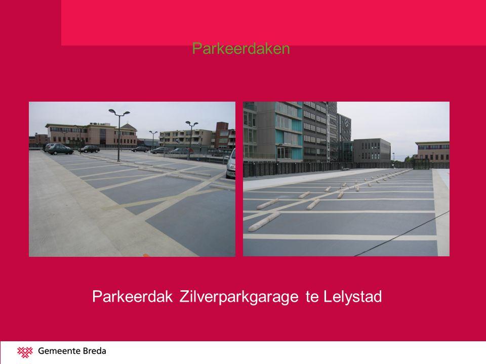 Parkeerdak Zilverparkgarage te Lelystad Parkeerdaken