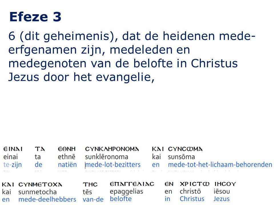 Efeze 3 6 (dit geheimenis), dat de heidenen mede- erfgenamen zijn, medeleden en medegenoten van de belofte in Christus Jezus door het evangelie,