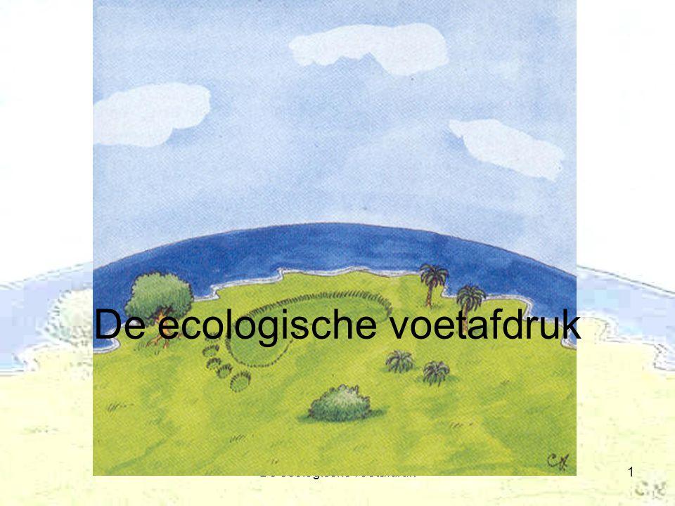 De ecologische voetafdruk1