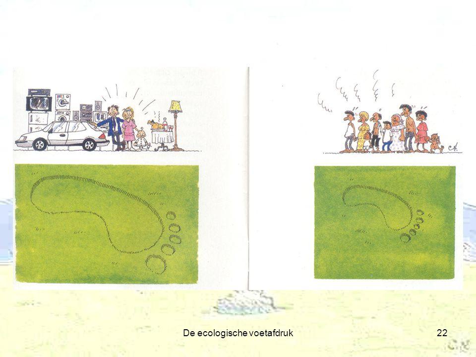 De ecologische voetafdruk22