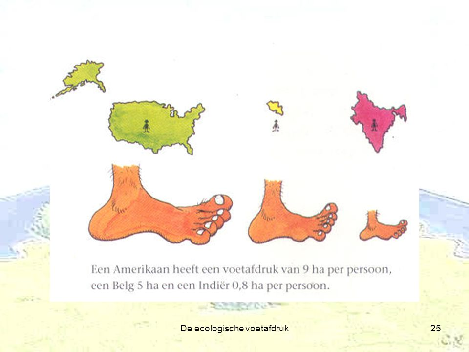 De ecologische voetafdruk25