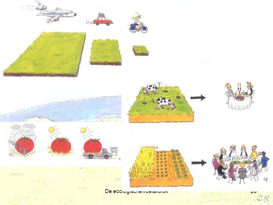 De ecologische voetafdruk28