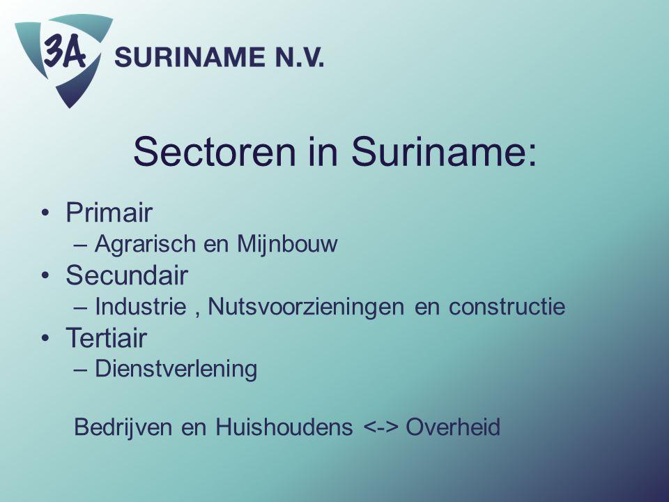 Sectoren in Suriname: Primair –Agrarisch en Mijnbouw Secundair –Industrie, Nutsvoorzieningen en constructie Tertiair –Dienstverlening Bedrijven en Hui