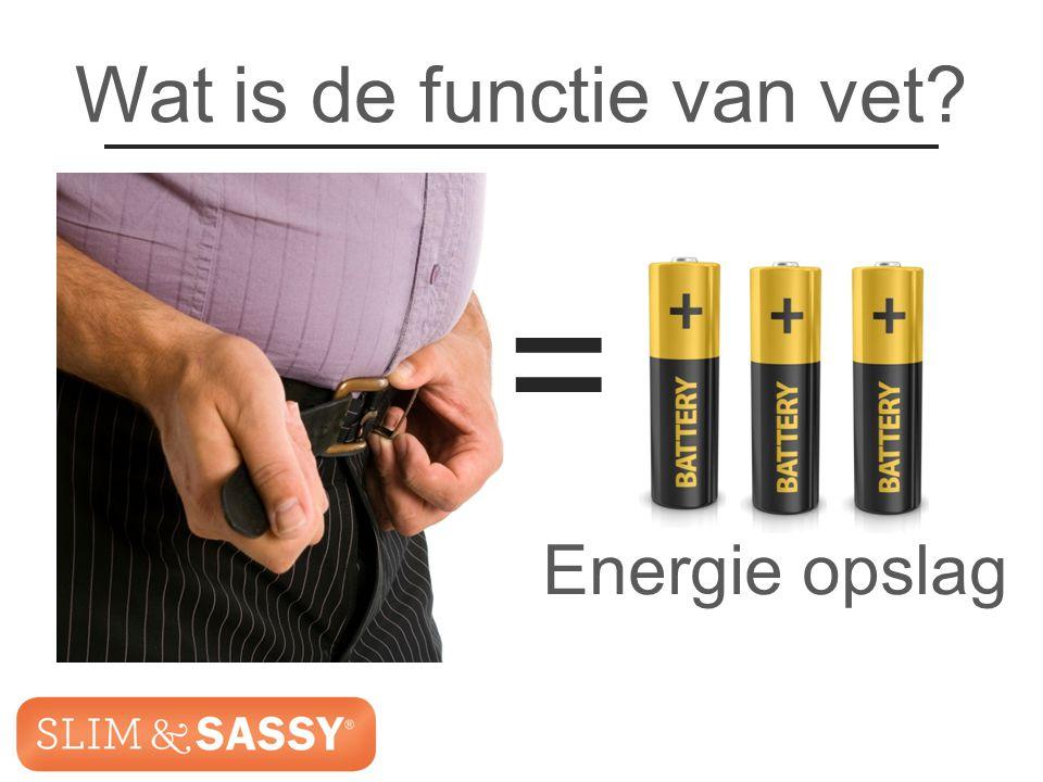 Slim & Sassy ™ Metabolic Blend Wat is de functie van vet? = Energie opslag Slim & Sassy ™